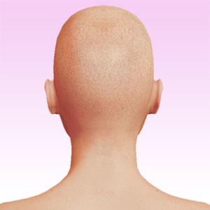 face rear